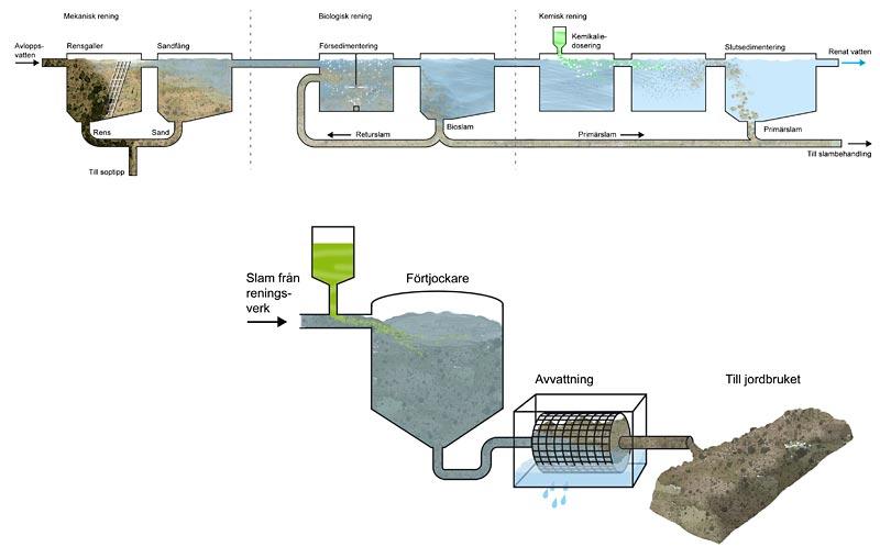 Rening av vatten